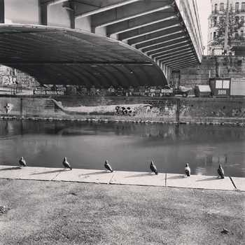 Social Distancing am Donaukanal