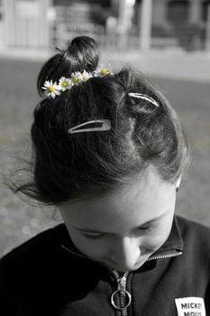 Die Frühlingsblümchen