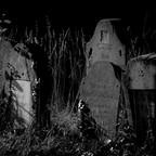 Es lebe der Zentralfriedhof