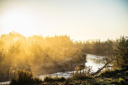 Pinka im Morgenlicht