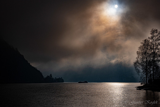 Morgennebel über der Donau
