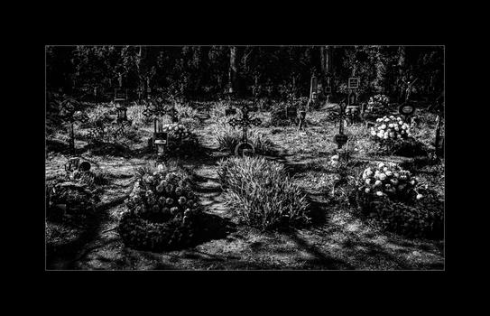 FriedhofDerNamenlosen(5)