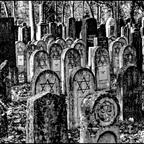 AmZentralfriedhof #13