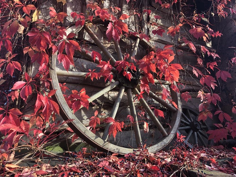 Der Herbst ist da!