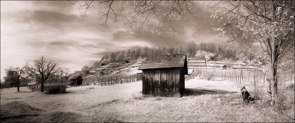 Hütte am Pfaffenberg