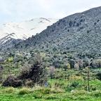 Omalos-Hochebene / Kreta