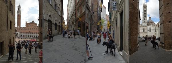 Gassen von Siena (3)