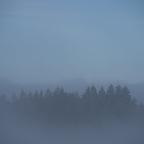 Nebelmeer