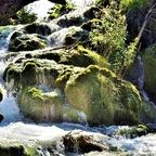 Moos - Wasserfall