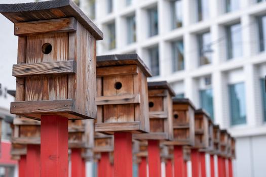 Vogelhäuserl kunstvoll aufgestellt...