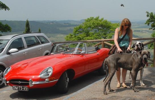 Jaguar E, ein Größenvergleich
