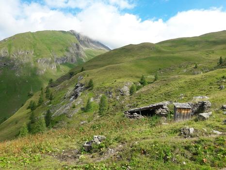 Almwirtschaft 2200 m Höhe
