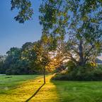 Sonnenuntergang Park Grafenegg