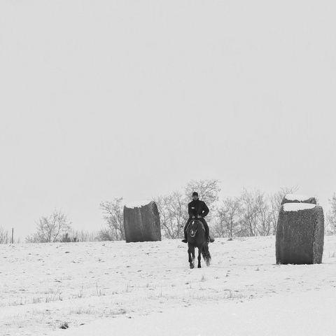 Zwei Winterfeste