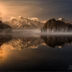 Goldener Morgen am Almsee