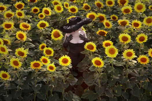 Frau im Sonnenblumenfeld