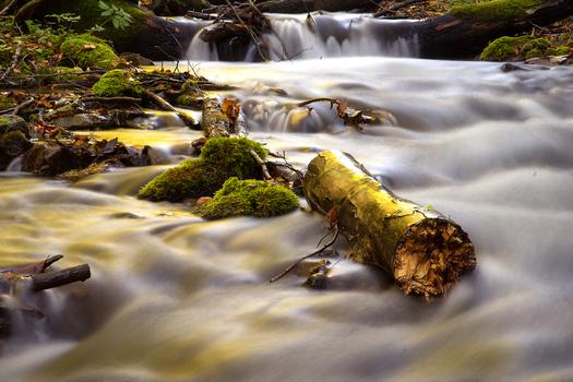 Milky Creek