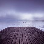 Nebel- Ausblick 2