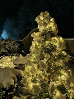 Frohe Weihnachten wünsche ich euch, LG. Johann