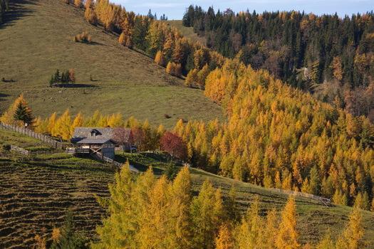 Herbststimmung Sommeralm1