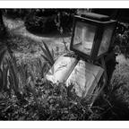 FriedhofDerNamenlosen(10)