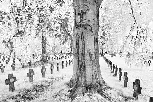 Weltkriegsfriedhof , Graz