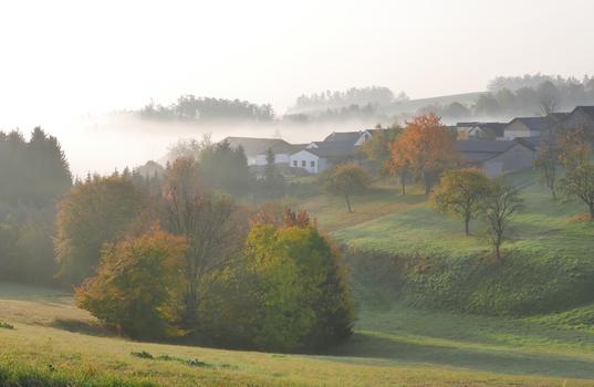 Tiefenbach im Morgennebel