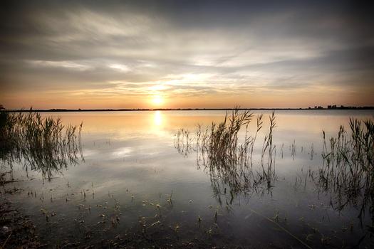 Sonnenuntergang im Nationalpark Neusiedler See