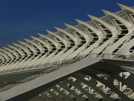 Museu de les Ciències (3)