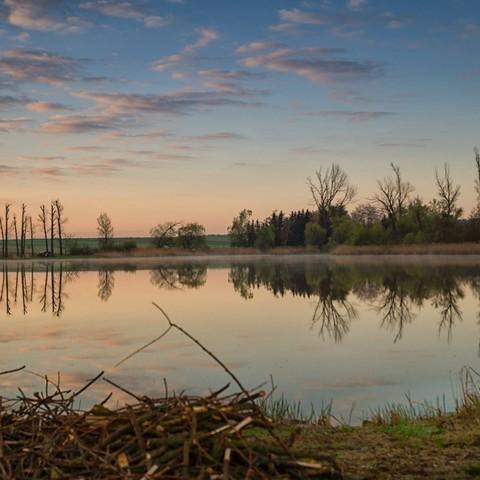Fischteich in Altenburg am Morgen
