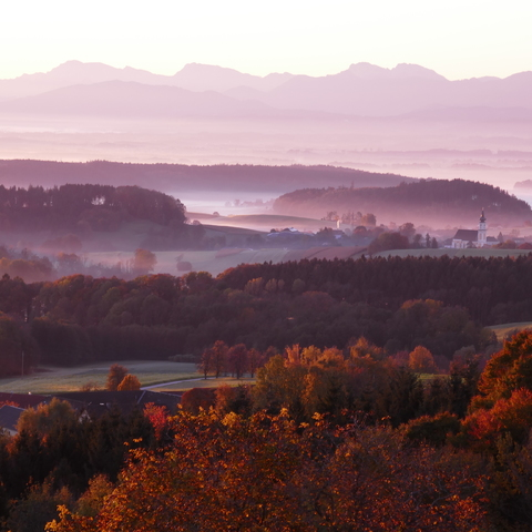 Traumherbst 2
