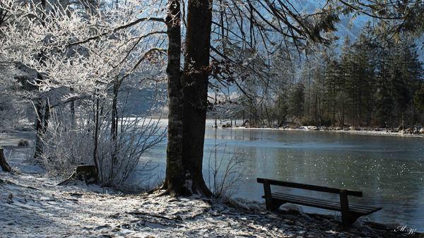 Bank am Eissee
