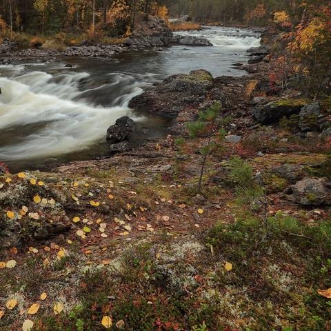 Herbst im hohen Norden.....