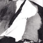 Firngrat, 1952