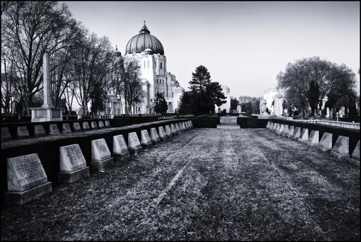 AmZentralfriedhof #17