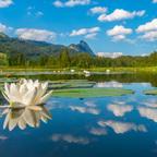 idyllischer Bergsee im Salzkammergut