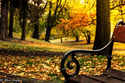 Wundervoller Herbst