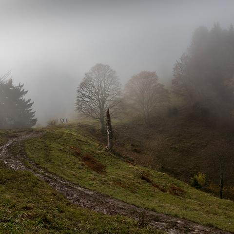 Schoberstein Abstieg