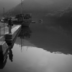 limski fjord 1