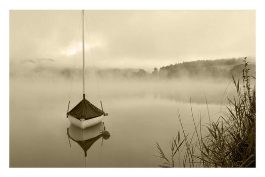 Ein Morgen am See (5)