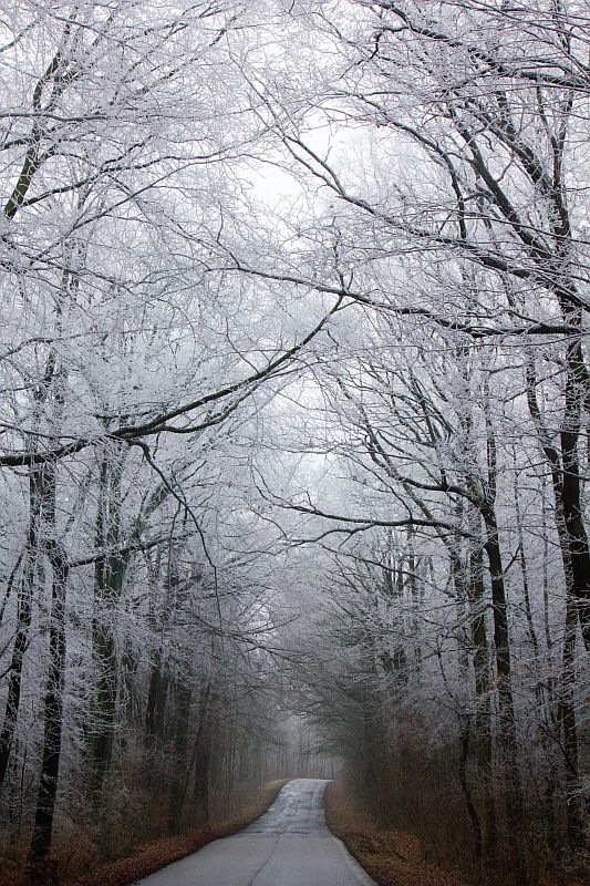 Der Wandel der Jahreszeiten