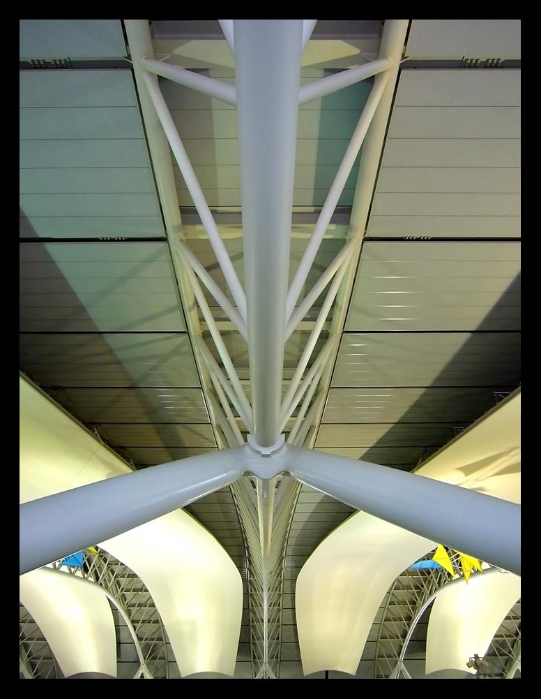 osaka-roof