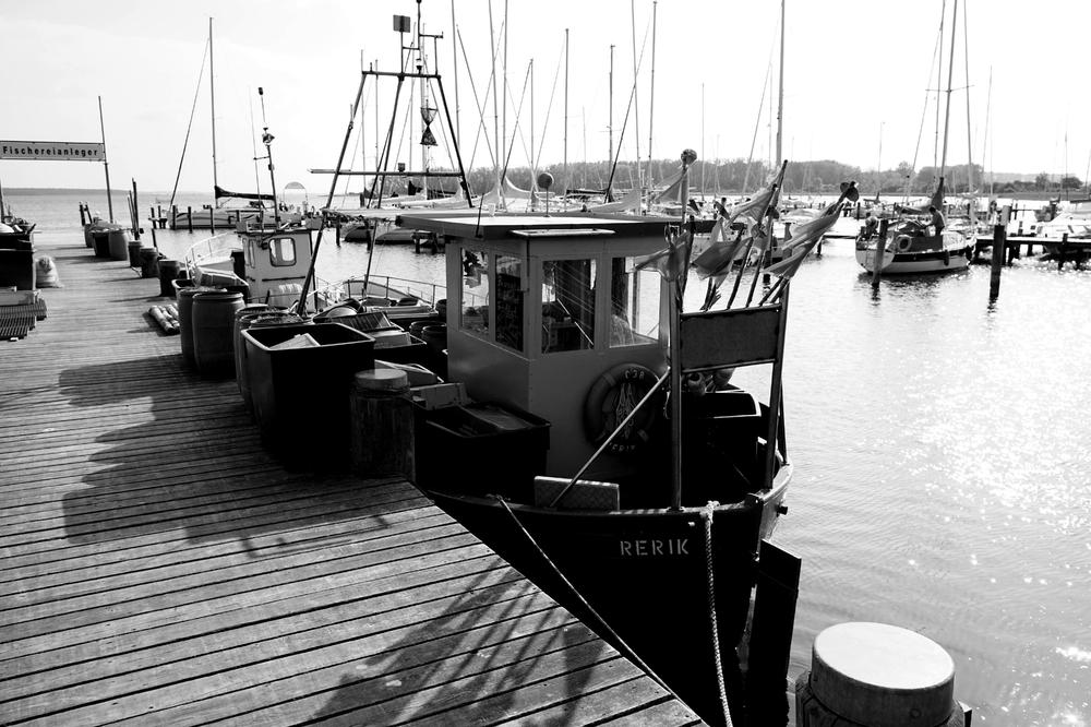 Fertig zur Ausfahrt,  der Fischereibereich im Hafen von Rerik