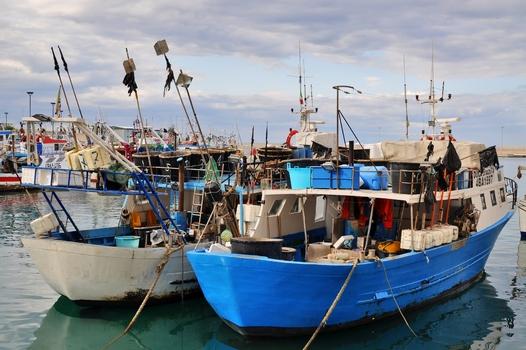 ...im Hafen - Monopoli / Apulien / Italien