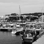Im Hafen von Cala Rajada III