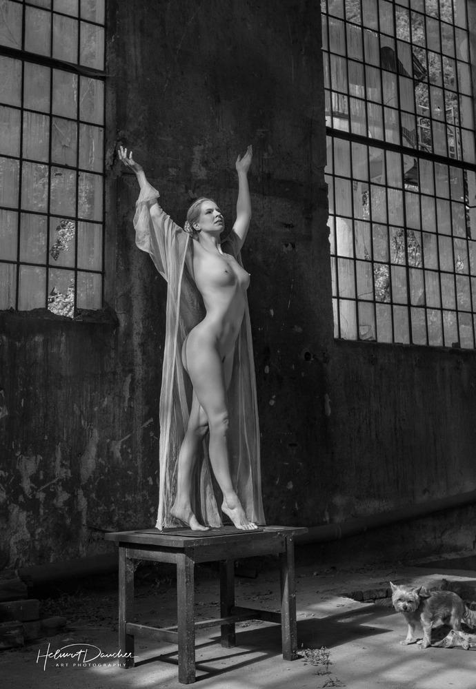 Venus mit Hündchen