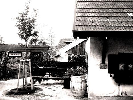 Weinbauernhaus 2