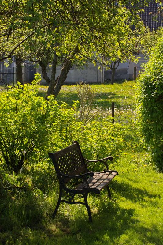 Macro Osterspaziergang im Garten 4