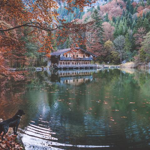 Herbstlicher Berglsteinersee