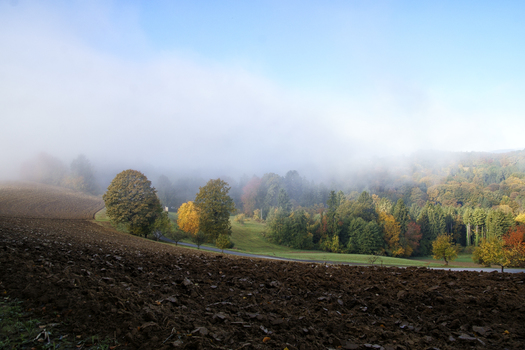 Nebelzone